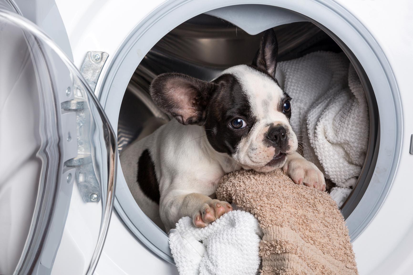 Как ухаживать за стираальной машинкой
