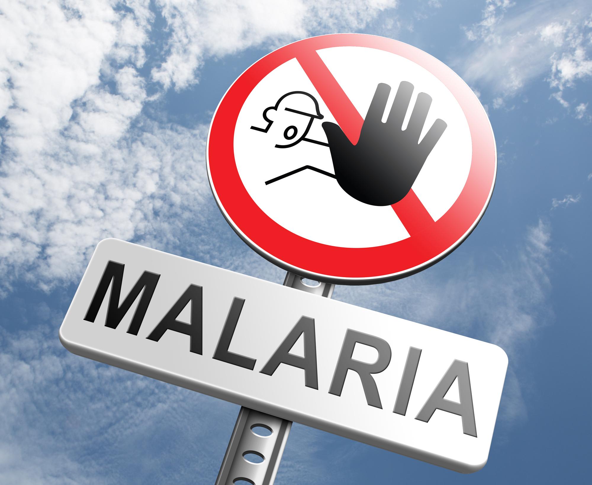 Малярия: что следует знать
