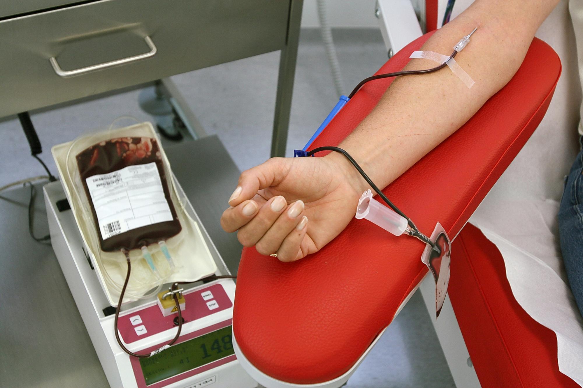День донора: как сдавать кровь