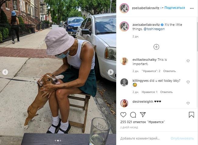 Женщина-кошка на карантине: Как сейчас выглядит смуглая красотка Зои Кравиц