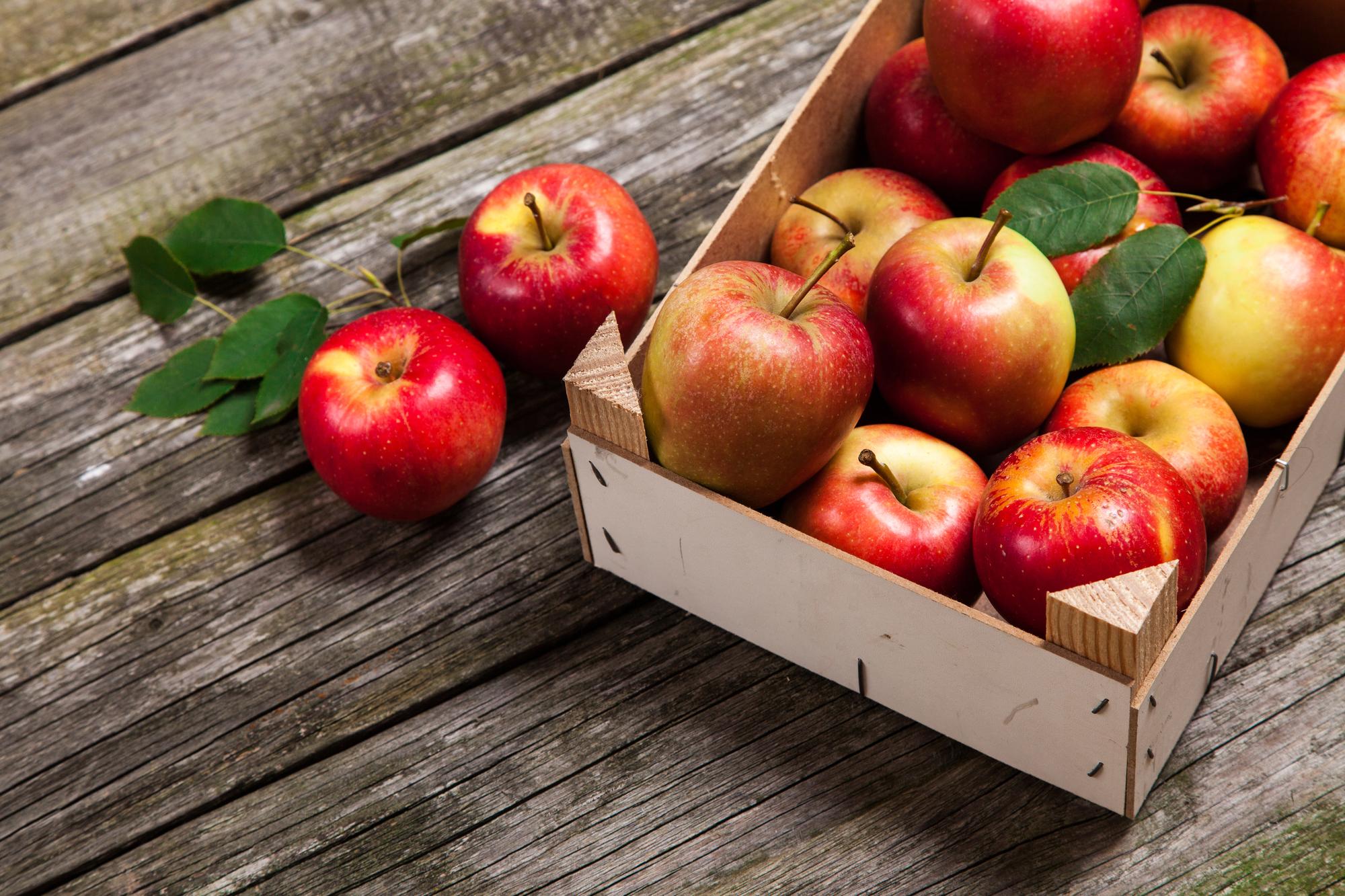 Медовый, Яблочный и Ореховый Спас: дата и традиции