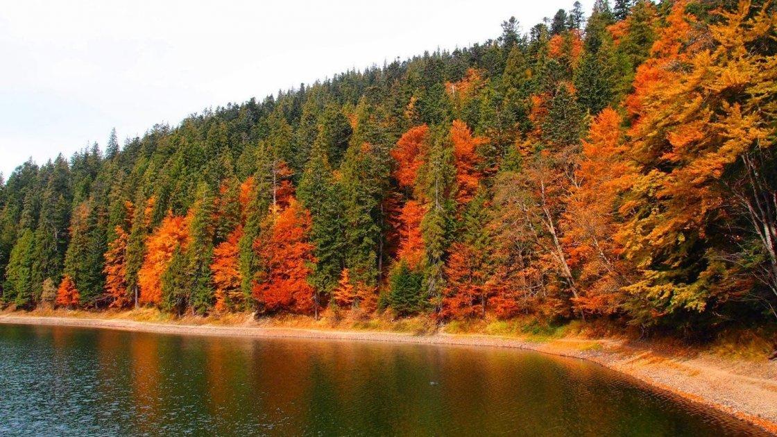 Осенние Карпаты очень полезны: ТОП-3 санатория Прикарпатья