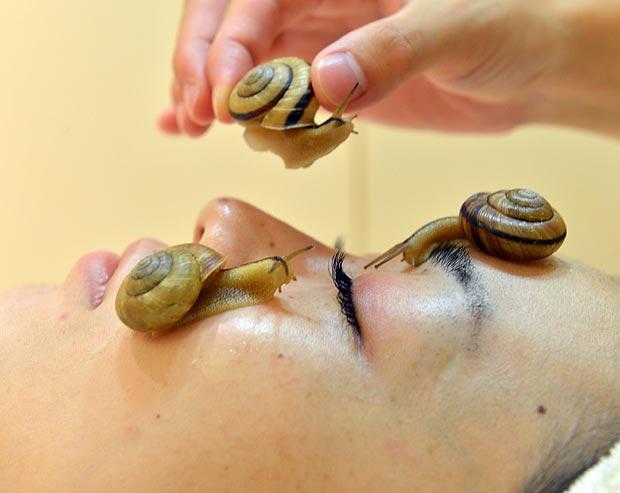 Улиткотерапия способна не только омолодить лицо, но и вылечить кожу от ожогов и воспалений