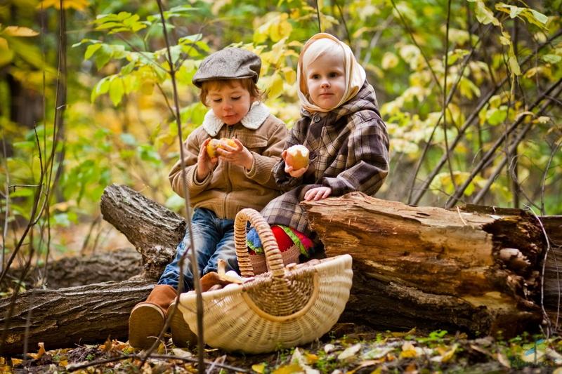 Поход в лес за грибами очень объединяет семью