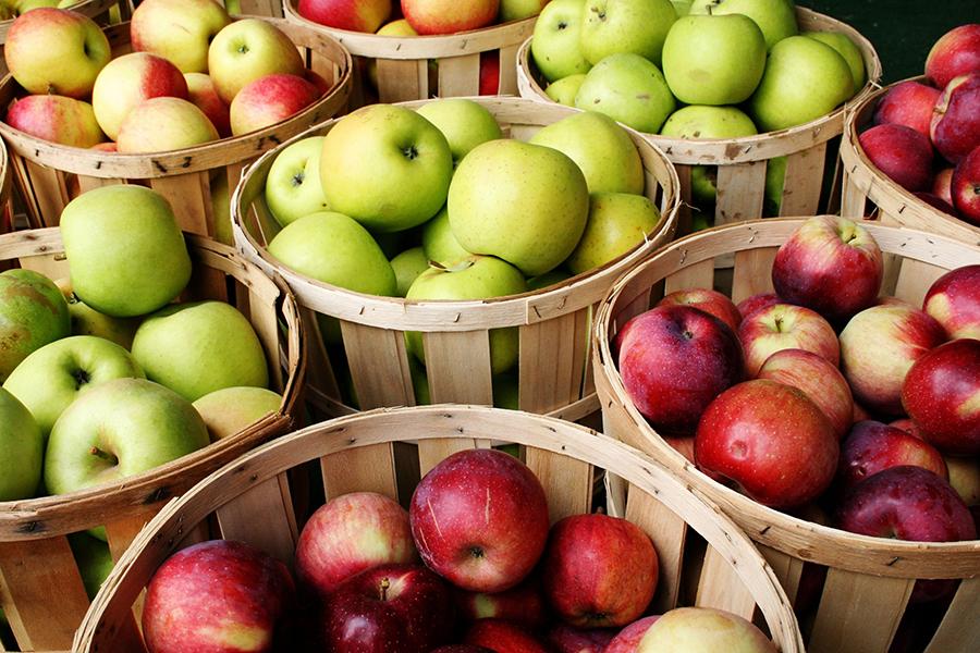 Яблоки выводят из организма все вредные вещества и токсины, очищают зубную эмаль, улучшают работу печени