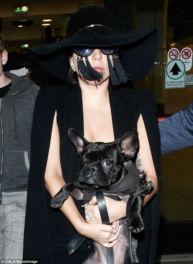 Lady GaGa удивила странными очками