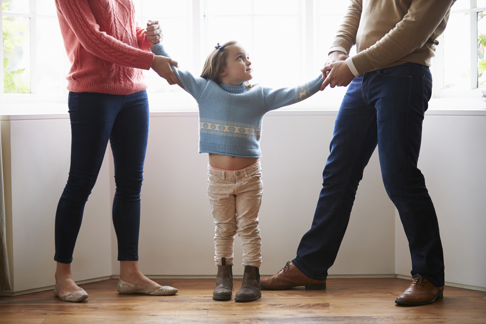 divorce and the new family New york divorce source is a divorce information resource for new york divorce laws, divorce forms, and advice about divorce, child custody, visitation, alimony, spousal support, and other family law related issues.