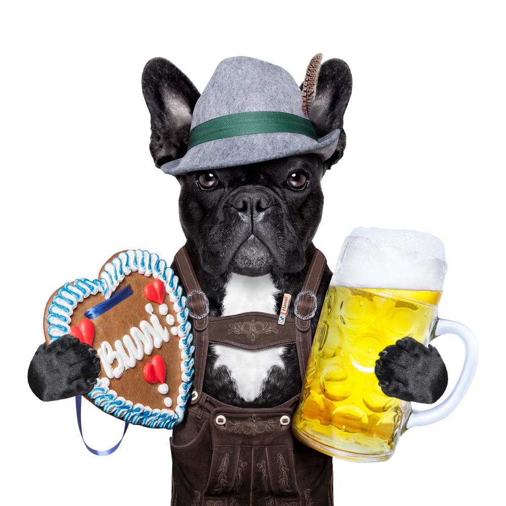 Любителям пива можно подарить пивную кружку