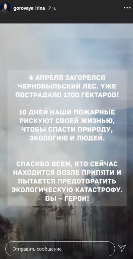 Публикация Ирины Горовой