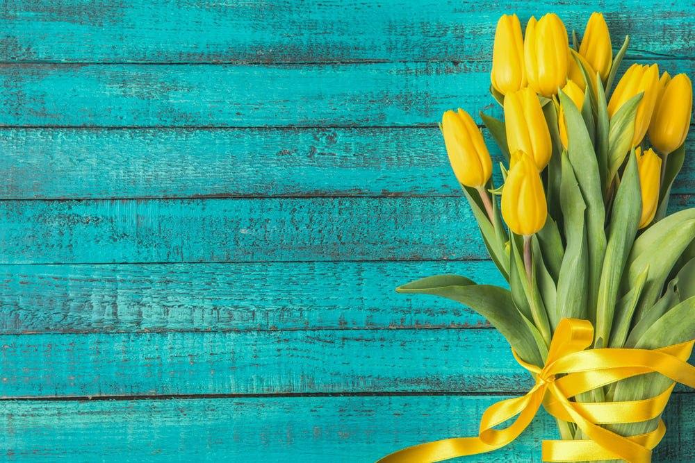 Букетик алых роз: какие цветы дарят женщинам 8 Марта в Украине и мире