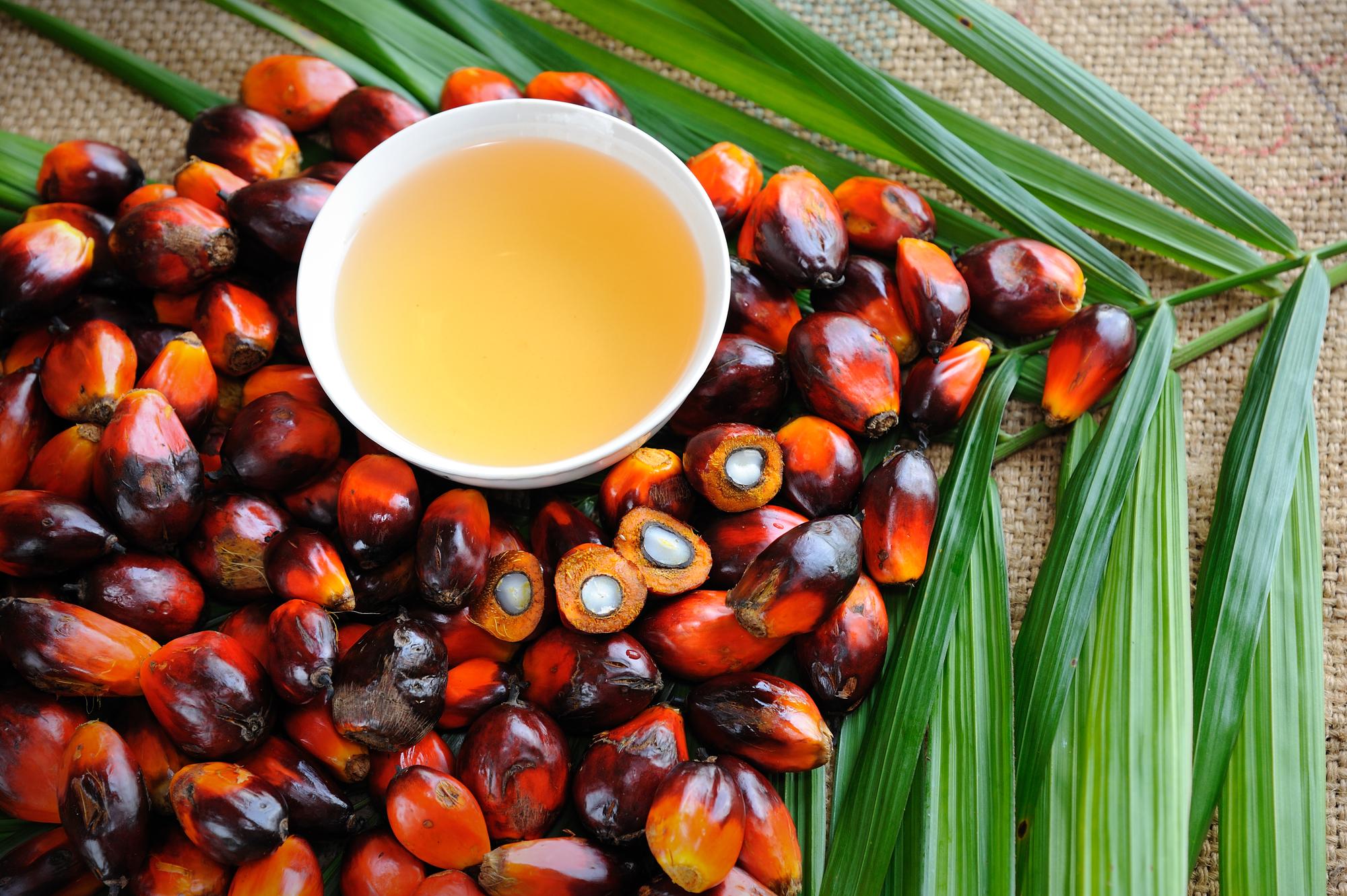 Ульяна Супрун рассказала, что следует знать о пальмовом масле