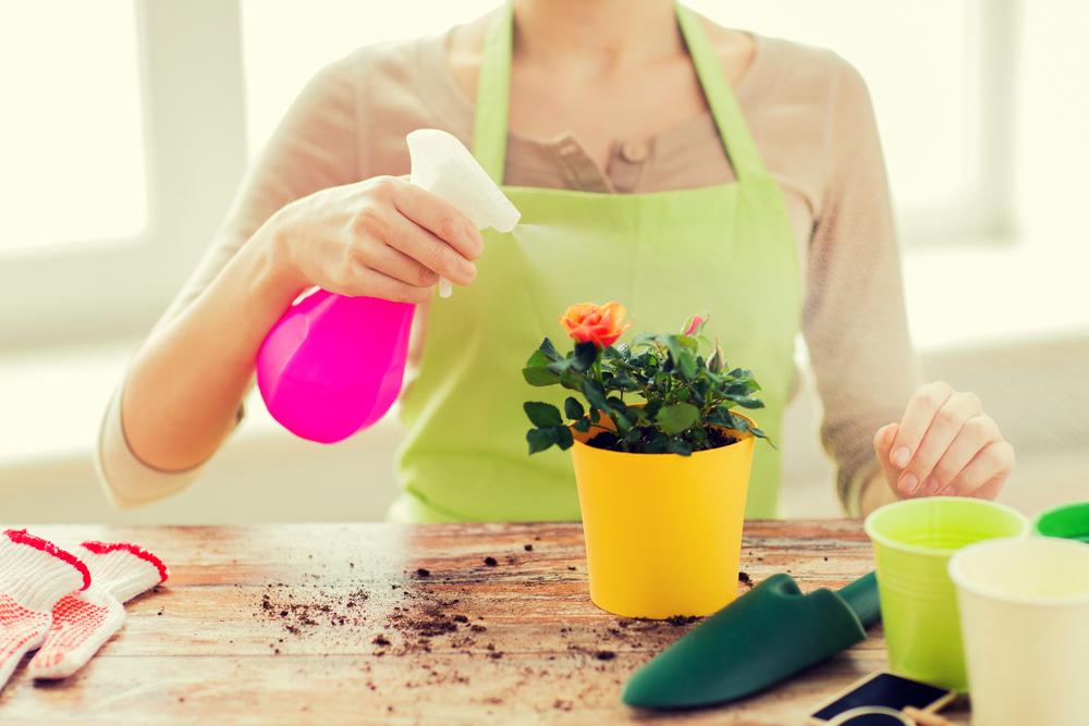 Что подарить маме на День матери - набор инструментов для ухода за цветами