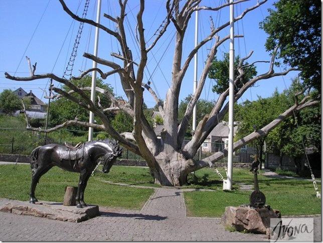 100-летний дуб