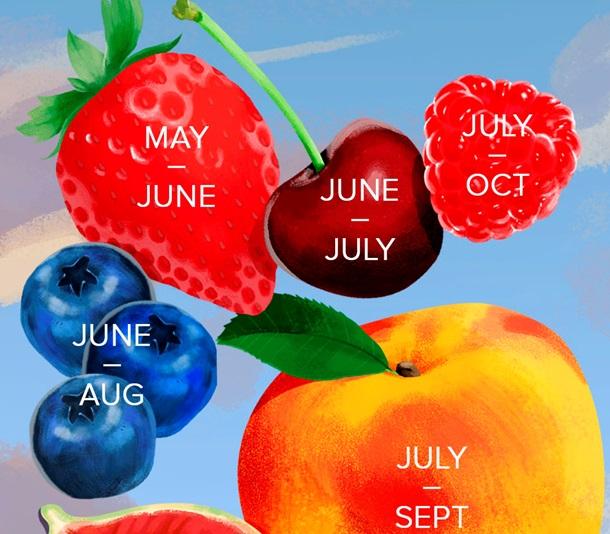 Когда можно кушать сезонные фрукты?