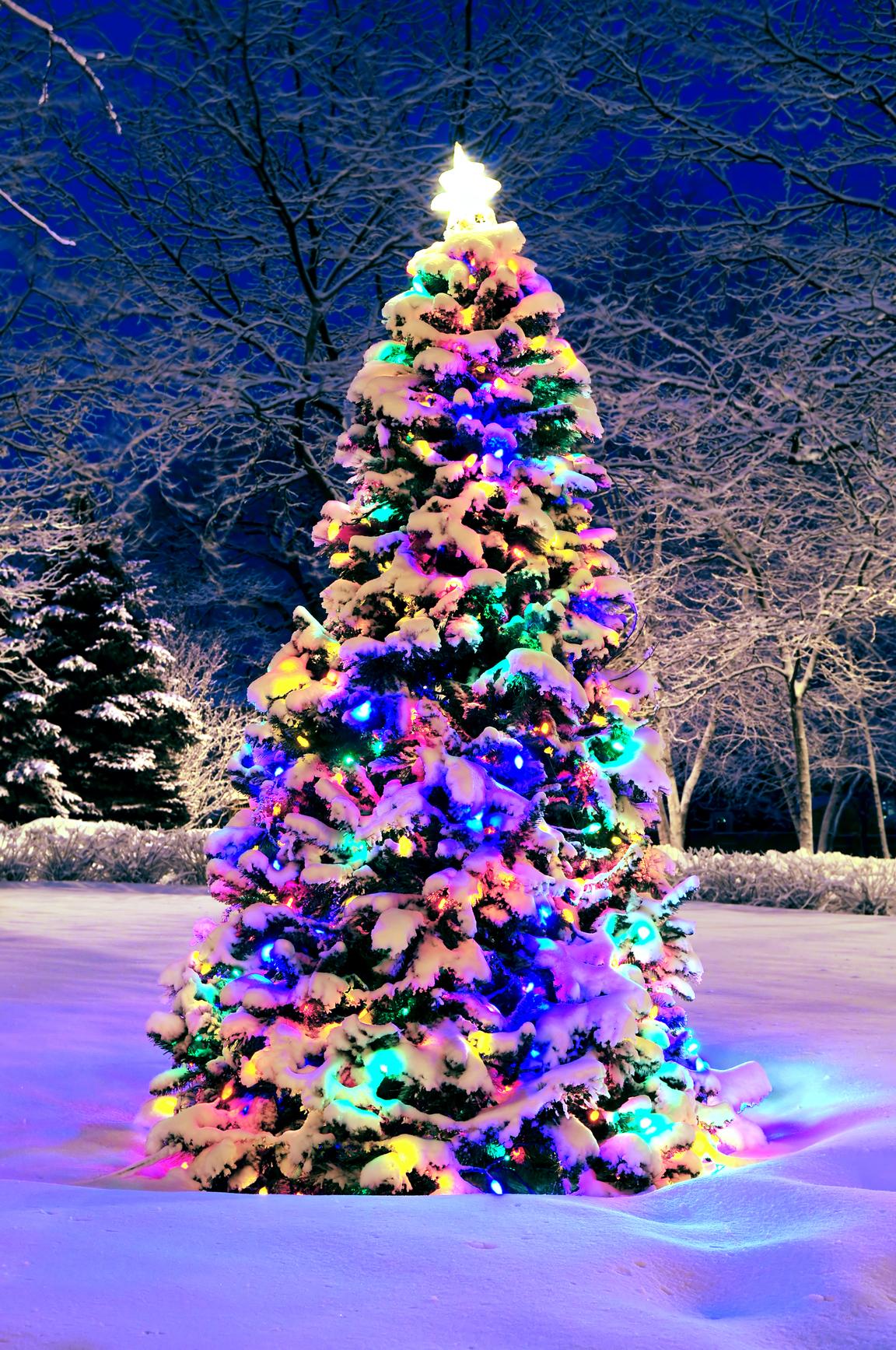 Поздравленья к праздникам рождество фото 397