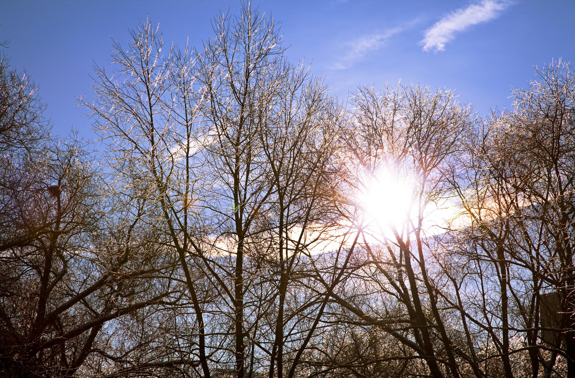 День зимнего солнцестояния в 2019 году: праздник, традиции, приметы