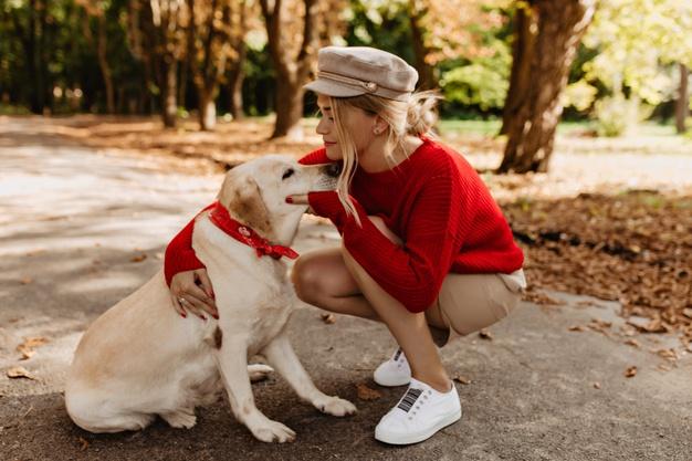 Какая порода собак тебе подходит по знаку Зодиака