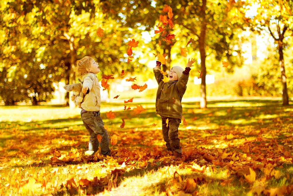 Картинки по запросу осень дети