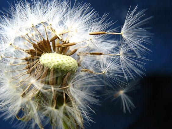Запреты дня 16 июня 2020: Чего категорически нельзя делать на Лукьяна-ветряка