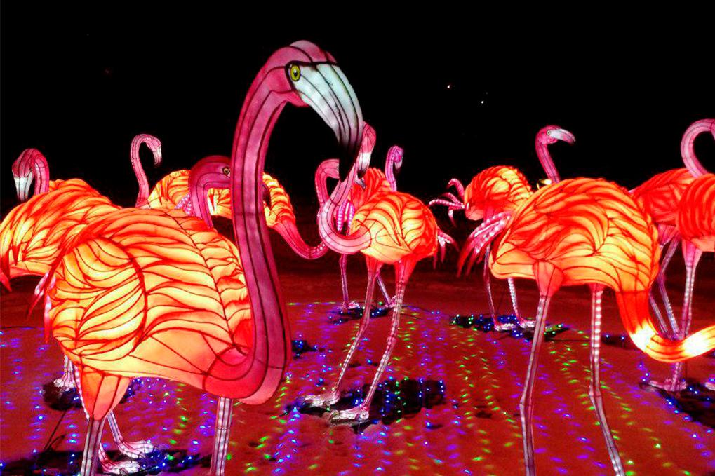 В Киеве проведут всемирно известный Фестиваль Гигантских Китайских Фонарей