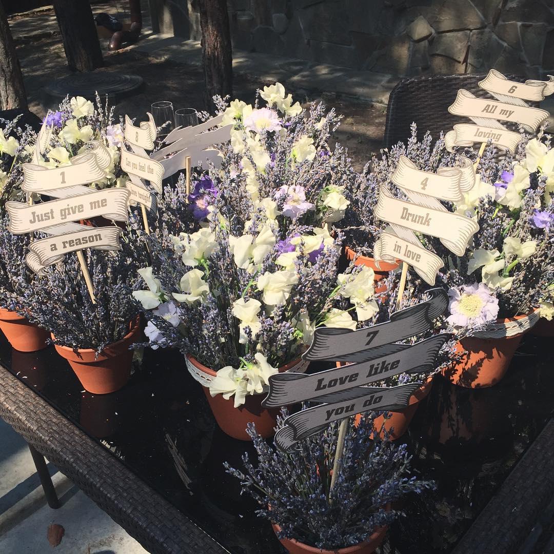 Лаванду на свадьбу Нади и Владимира собирала мама невесты в Крыму