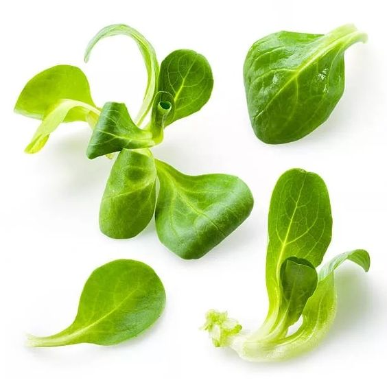Салат корн (рапунцель)