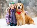 Домашние животные способствуют социализации детей с аутизмом