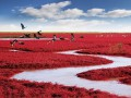 Рай на земле: ТОП-4 невероятных места, которые нужно увидеть каждому