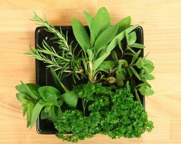 Рецепт                  Как засолить зелень на зиму?