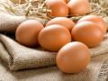15 интересных фактов о яйце