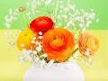 Лайфхак: как сделать так, чтобы цветы быстро распустились