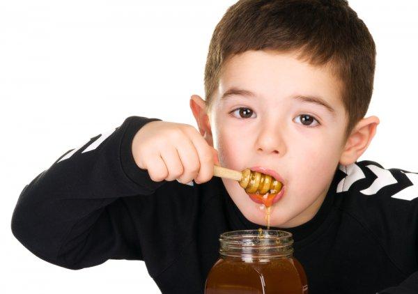 Одним из лучших лакомств для ребенка является мед
