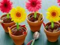 Как приготовить десерт Шоколадный цветочный горшочек