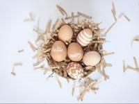 Пасха 2017: ТОП-5 идей для украшения яиц