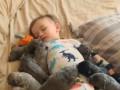 Доза умиления: как выглядит по-настоящему сладкий сон