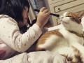 Дети и котики: Самые милые фотографии