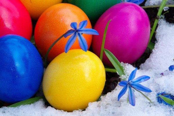 Ты можешь окрашивать яйца листьями березы или ореха, зеленью, морковным или свекольным соком