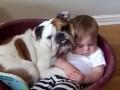 Доказательство того, что нет няни лучше собаки