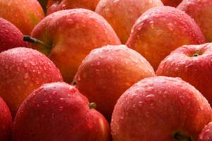 Диетологи считают, что лучше всего использовать в меню «родные» продукты