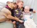Тео и компания: Дружба детей и пса