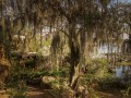 Время не щадит: фото заброшенного парка аттракционов Disney