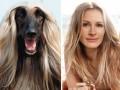 Животные, которые невероятно похожи на знаменитостей