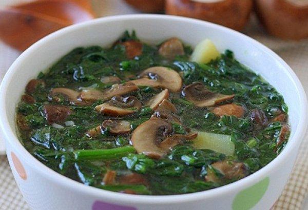 Рецепт                  Суп из шпината с грибами