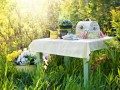 50 летних идей для дачи: украшаем дом и сад