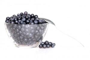 Плоды черники способствуют выводу из организма радионуклидов и токсинов