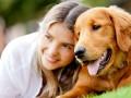 Клички собак: Как назвать друга?