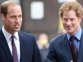Годовщина смерти принцессы Дианы: принцы Гарри и Уильям начали подготовку