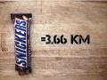 Цена стройного тела: калорийность продуктов в километрах бега