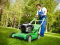 Как выбрать газонокосилку для загородного дома