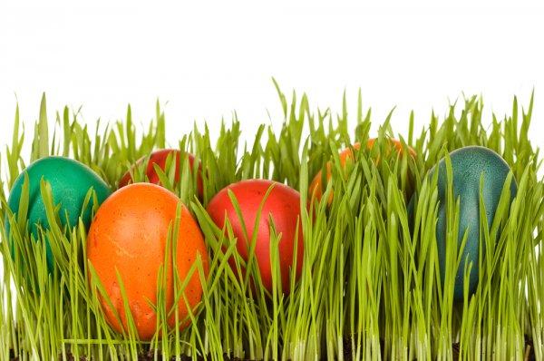 Окрасить яйца к Пасхе можно без применения химикатов